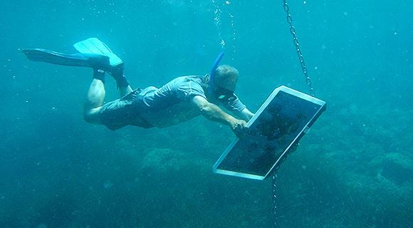 Sendero submarino de Calpe - Unterwasser-Wanderweg