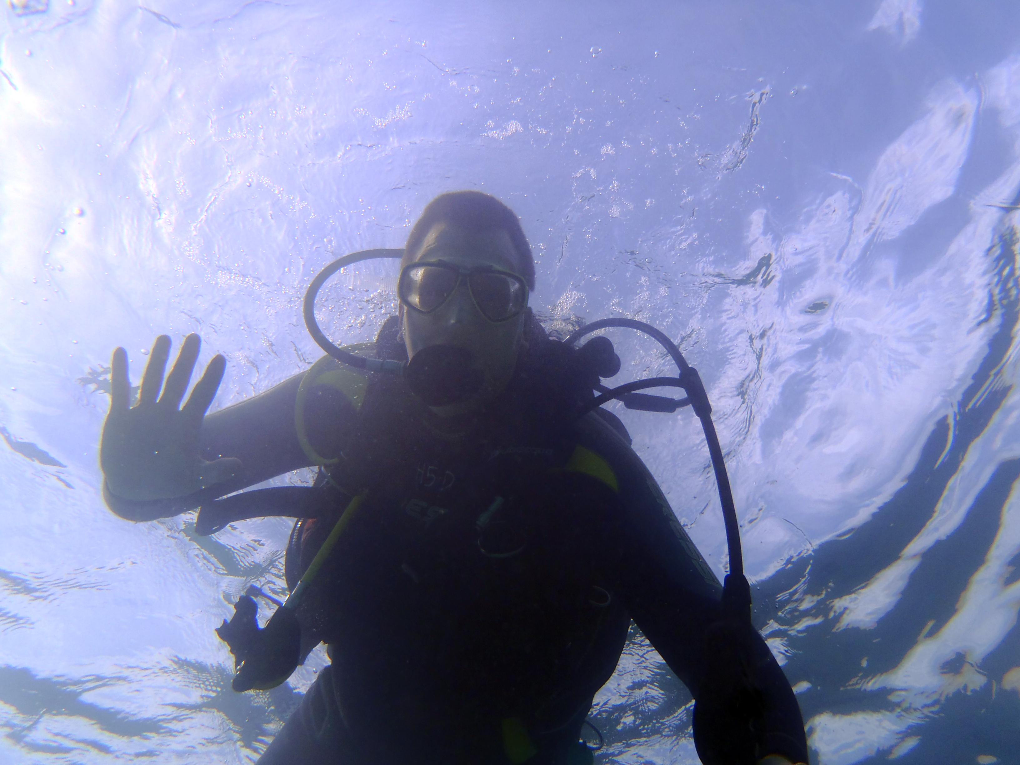 """Calpe und die Costa Blanca tauchen am 29.+ 30.November zur """"Mittelmeer-Tauch-Show"""", Mario Schumacher Blog"""