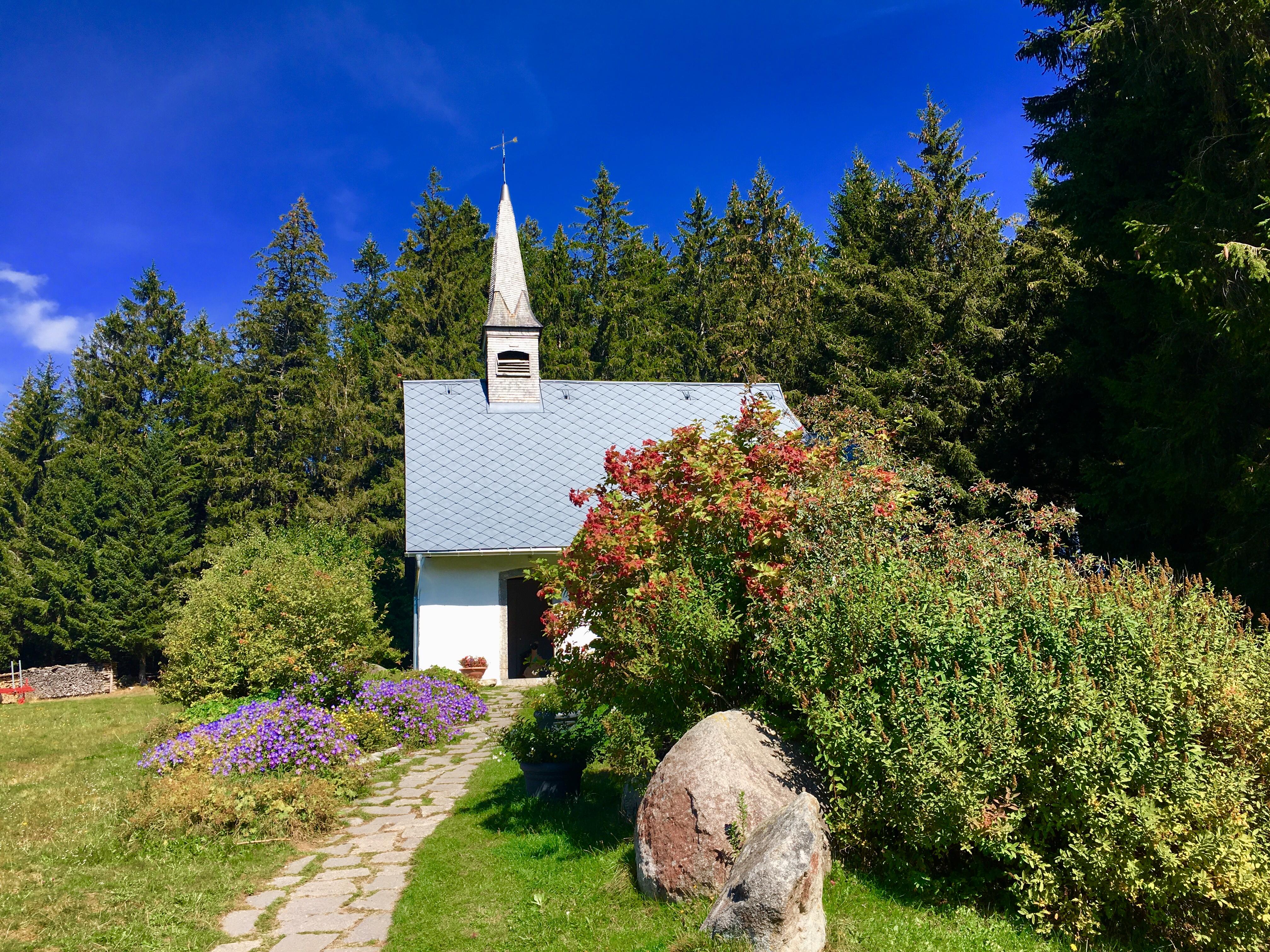 Todo HEIDI… Una visita al Kolmenhof en la hermosa Selva Negra (Schwarzwald), Mario Schumacher Blog